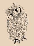 Owl hand drawn, black and white Royalty Free Stock Photos
