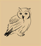 Owl hand drawn, black and white Royalty Free Stock Images
