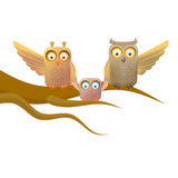 Owl happy family Royalty Free Stock Image