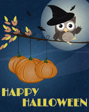 Owl Happy Halloween. Little brown owl with witch hat on, sitting on branch as it was broom, with pumpkins and happy Halloween text Royalty Free Stock Images