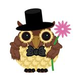 Owl in hat with flower. On white Royalty Free Stock Images
