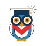 Owl with hat graduation Stock Photos