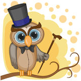 Owl in a hat Stock Photography