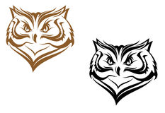 Owl head. For mascot design Stock Photography