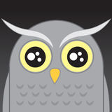 Owl Head Royalty Free Stock Photos