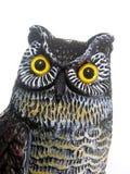 Owl Head Royalty Free Stock Photography