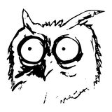Owl head with big eyes Royalty Free Stock Image
