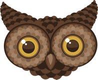 Owl Head olhando fixamente Imagem de Stock Royalty Free