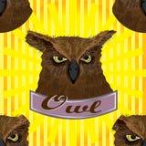 Owl head seamless pattern Stock Photo