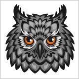 Owl Head -  on white. Stock Photos