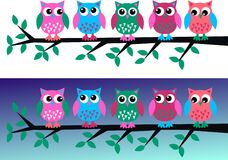 Owl headers. A group of colorful owls sitting on a branch Royalty Free Stock Image