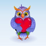 Owl with heart Stock Images