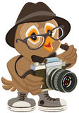 Owl hipster in hat and sunglasses holding retro camera. Bird photographer Royalty Free Stock Photography