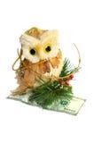 Owl holding money. Owl sitting on a dollars isolated on white background Royalty Free Stock Images