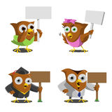 Owl Holding Wooden Boars Stock Photography
