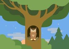 Owl hollow forest habitat flat cartoon vector wild animal bird. Owl in a hollow tree forest habitat flat design cartoon vector wild animals birds. Flat zoo vector illustration
