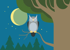 Owl hollow forest habitat flat cartoon vector wild animal bird Stock Image