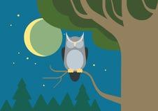 Owl hollow forest habitat flat cartoon vector wild animal bird. Owl in a hollow tree night forest habitat flat design cartoon vector wild animals birds. Flat zoo Stock Image