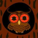 Owl in the hollow night. Owl on tree night moon stars beautiful illustration Stock Photography