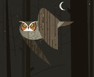 Owl hunts in the night forest. On dark background Stock Photography