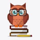 Owl icon design Stock Photo