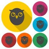 Owl Icons Set Foto de archivo