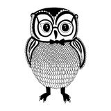 Owl illustration Stock Photo