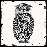 Owl illustration Royalty Free Stock Photography