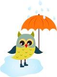 Owl Illustration, Cartoon Owl. Green cartoon owl with umbrella and blue boots, rain, water, orange umbrella, fauna, bird, nature Royalty Free Stock Image