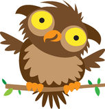 Owl. Illustration of a little brown owl. Quite happy I might add Royalty Free Stock Image