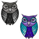 Owl - Illustration Royalty Free Stock Image