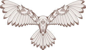 Owl illustration Stock Photography