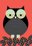 Owl /illustration Stock Photography