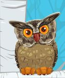Owl illustration. Very detailed illustration of an owl. All elements are placed on separate layers, for easy editing vector illustration