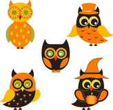 Owl Illustrations preto e alaranjado Imagens de Stock
