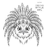 Owl in the Indian roach. Indian feather headdress of eagle. Hand draw vector illustration Stock Images
