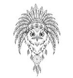 Owl in the Indian roach. Indian feather headdress of eagle. Hand draw vector  illustration Royalty Free Stock Images