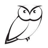 Owl. Isolated on white background Royalty Free Stock Photo