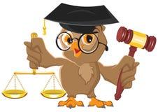 Owl Judge hållande auktionsklubba och våg Arkivfoto