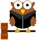 Owl judge Stock Photo