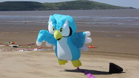 Owl Kite at festival Weston-Super-Mare Somerset Royalty Free Stock Photo