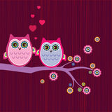 Owl love Stock Photography