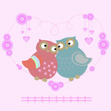 Owl lovers Stock Images
