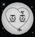 Owl lovers. Owl valentine lovers at night on a heart branch  on white background Royalty Free Stock Photos