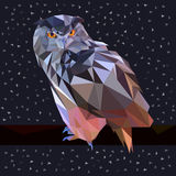 Owl low poly design stock photography