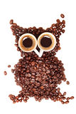 Owl made from coffee beans Stock Photos