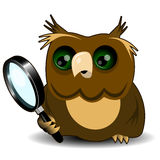 Owl with a magnifying glass Stock Images