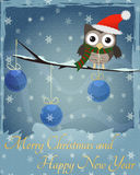 Owl Marry Christmas and Happy New Year. Little brown owl on snowy  branch and  Marry Christmas and Happy New Year text Stock Photography