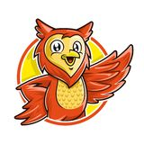 Owl mascot character, vector of owl cartoon smiling in circle background stock images
