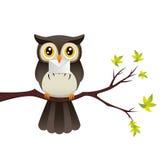 Owl med en märka Royaltyfri Bild